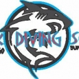 Shark Diving School