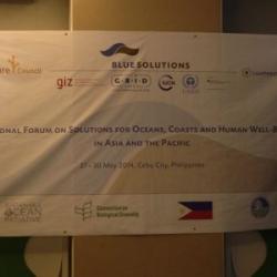 May 2014 - The Reef-World Foundation represents Green Fins at the Regional Forum on Solutions