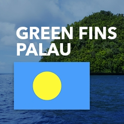 March 2017 - Green Fins workshop in Pristine Paradise Palau